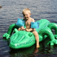 Krokotiili2